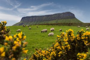 Benbulben Mountain